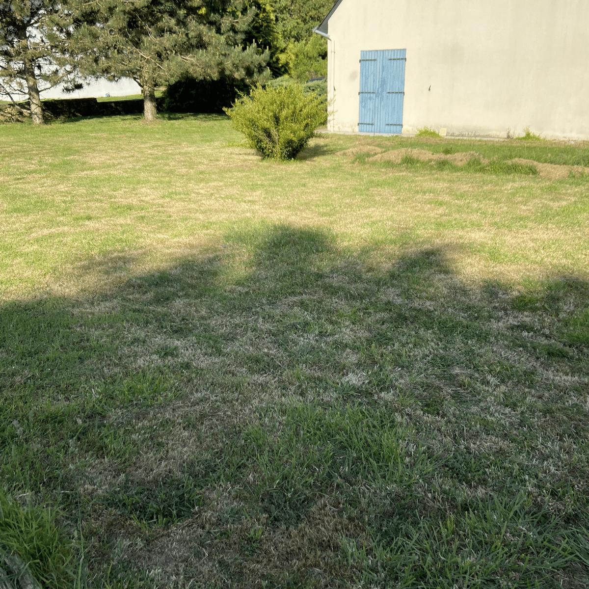 Cas pratique - avant jardin